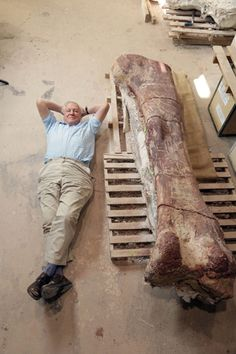 Sir David Attenborough Lies Alongside a Giant Femur (Thigh Bone) Potentially the biggest terrestrial animal known to science.