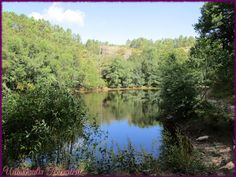 https://flic.kr/p/LTfAxY | Broceliande - J1 val sans retour petit lac avant le…