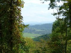Mouth of Wilson, VA - Fantastic 22+ Acres w/Hunting Cabin - MLS# 48421 - $89,999