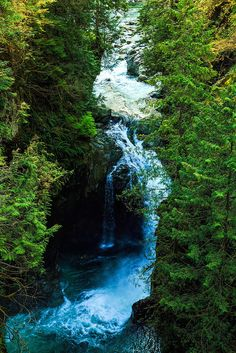 Lynn Canyon Park, North Vancouver, BC #river #forest #beautiful