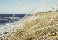 Ristinge Klint, Langeland Island, Denmark during new year