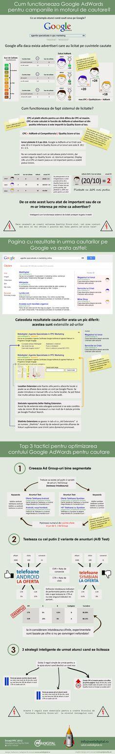 Infografic Google Adwords Search