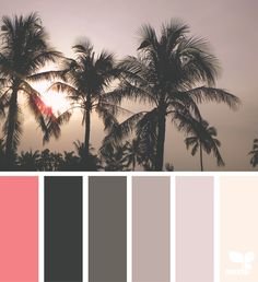 Tropical Tones