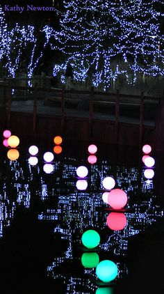1000 Images About Events On Pinterest Festival Of Light