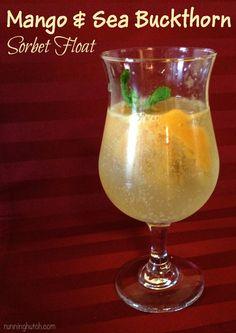 Mango & Sea Buckthorn Sorbet Float | Matters Of Course