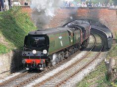 34091 Squadron' at Steel Steam & Stars Live Steam Locomotive, Diesel Locomotive, Southern Trains, Old Wagons, Railroad Pictures, Steam Railway, Southern Railways, Railway Museum, Train Art