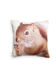 Cushion with photo print of Squirrels. From H