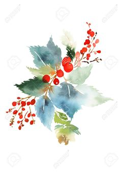 Christmas watercolor card with spruce and berries - Royalty-free Christmas stock illustration Watercolor Fruit, Easy Watercolor, Watercolor Cards, Watercolor Flowers, Watercolor Paintings, Watercolours, Painted Christmas Cards, Watercolor Christmas Cards, Christmas Drawing