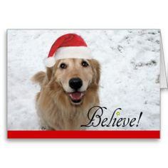 Golden Retriever Believe Christmas Greeting Card by #AugieDoggyStore on Zazzle.