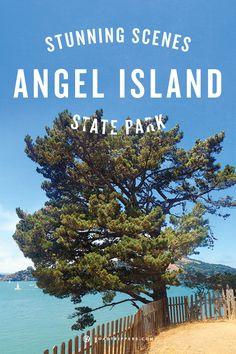 Angel Island State Park is definitely a hidden gem in California.