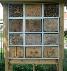 Bijenhotels voor wildebijen  Hotels to wild bees