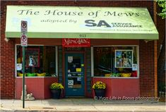 House of mews Memphis