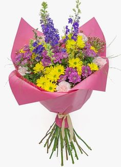 Gauteng Flower & Gift Delivery for all occasions. Planter Pots, Daisy, Flowers, Gifts, Presents, Margarita Flower, Daisies, Favors, Royal Icing Flowers