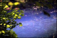 丸池様 | Flickr - Photo Sharing!