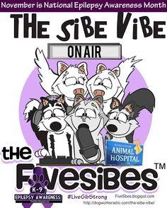"FiveSibes™: ""The Sibe Vibe"" - Talking Canine Epilepsy With Gib..."