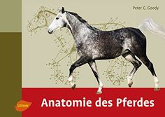 Anatomie des Pferdes von Peter C. Goody http://www.amazon.de/dp/3800183625/ref=cm_sw_r_pi_dp_z-SXwb0YN685R