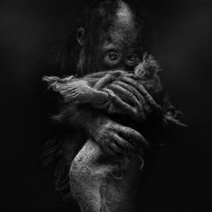 Photograph Comfort. by Lee Jeffries on 500px