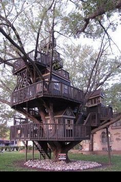 Multistory tree house