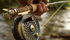 The main reason I go camping is to fish :).  Would like to add a fly fishing rod to the camping gear....and learn how to use it.