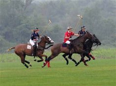 Sport of polo