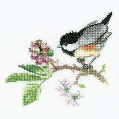 Chick Berry - Valerie Pfeiffer Cross Stitch