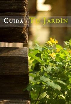 Cuida tu Jardín con la mejor maquinaria de jardinería. Descubre nuestros productos en feruelte.es