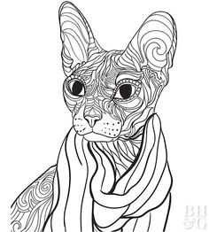 Color a likeness of your favorite furry friend with these free pet coloring pages! We've designed animal coloring pages for dog and cat lovers alike, so break out the colored pencils, pick your favorite breeds, and enjoy. Puppy Coloring Pages, Blank Coloring Pages, Coloring Books, Colouring, Adult Coloring, Coloring Sheets, Animal Projects, Animal Crafts, Craft Projects