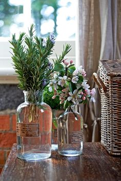 """""""There's Rosemary, that's for Rememberence"""" - Fragrant Herbs Offer Aromatherapy - QualQuest************"""