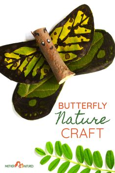 This butterfly nature craft turns out almost like the real thing. The wings look so stunning! Leaf Crafts, Baby Crafts, Toddler Crafts, Fun Crafts, Arts And Crafts, Autumn Crafts, Nature Crafts, Summer Crafts, Butterfly Crafts