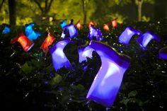 luzinterruptus : nouvelles installations lumineuses   La mauvaise herbe