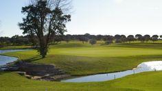 Montado Golf - https://www.condorgolfholidays.com/golfcourses/lisbonestoril