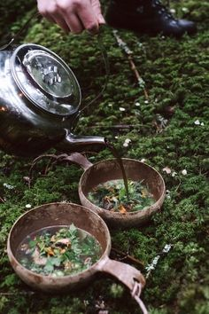 With this special project, Sweden becomes the world's largest gourmet restaurant. Nature Aesthetic, Witch Aesthetic, Aesthetic Fashion, Different Aesthetics, Cottage In The Woods, The Hobbit, Witchcraft, Magick, Hogwarts