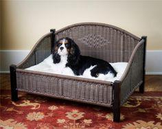 More About Energetic Cavalier King Charles Spaniel Size Cavalier King Charles, King Charles Spaniel, Diy Dog Bed, Cool Dog Beds, Elevated Dog Bed, Designer Dog Beds, Spaniel Puppies, Outdoor Dog, Pet Beds