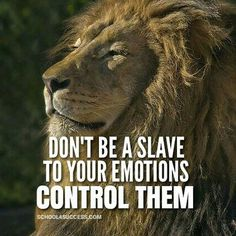 """Don't be a slave to your emotions. Control them, for control your life. - Follow my good friend @School4Success for more inspiration posts and for daily…"""