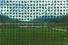 Los pequeños animales grabados en los cristales de la fachada de la Torre de…