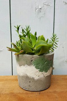 Check out this item in my Etsy shop https://www.etsy.com/au/listing/527421705/green-white-gray-concrete-planters