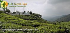 Get Kerala tour packages aim is to provide the best Kerala holiday honeymoon tour packages in India. tour packages in … Kerala, Cheap Honeymoon Packages, Italian Garden, Plantation, Cool Websites, Places To Visit, Holiday Packages, Tours, Travel