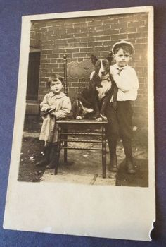 Great RPPC Dark Pit Bull Terrier  W/ Little Girl & Boy Real Photo Postcard