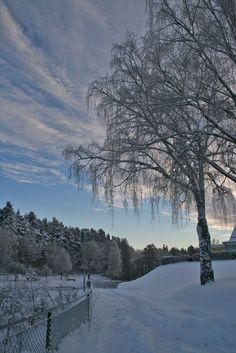 winter wonderland in Sweden.