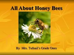 All about honey bees.  What a wonderful presentation to teach children more about honey bees!
