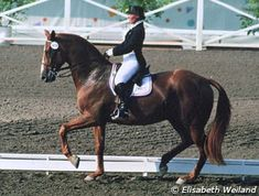 Hilda Gurney (USA) and Keen xx at the 1984 Olympic Games in Los Angeles