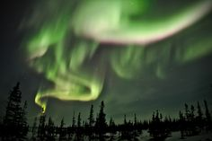 For those of us living too far south to see the Northern Lights, as well as those who would rather enjoy a view of the aurora borealis while warm and snug on the couch, this live stream is just the ticket.