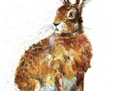 Hare & Daises Mounted Limited Edition Giclee by DawnMaciociaArt