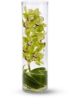 Improve your feng shui with a stem of green cymbidium orchids and variegated ti leaves, submerged under water in a tall cylinder vase.