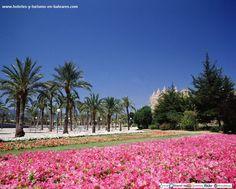Parque del Mar (Palma de Mallorca)