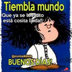Bonitas Fotos Hermosas Buenos Dias 26 Funny Animal Quotes, Funny Picture Quotes, Funny Pictures, Hilarious Animals, Good Morning Good Night, Morning Wish, Morning Morning, Spanish Humor, Spanish Quotes
