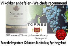 http://www.torres-partners.no/