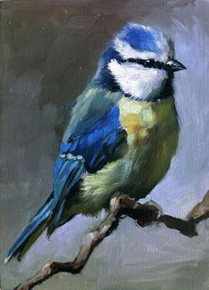 Gorgeous Blue Tit Bird Oil Painting...from Fincharts at Etsy.com...:)
