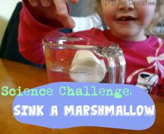 Science Challenge: Sink A Marshmallow {P is for Preschooler}