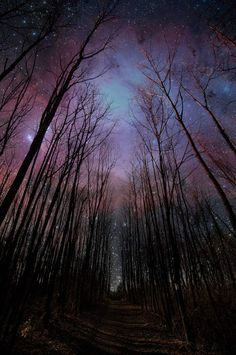 A dream of a purple sky filled with stars to say goodnight.  Photograph by Marty.FM